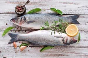 Fisk og skaldyr med Karsten Kroman (Hovedstaden)